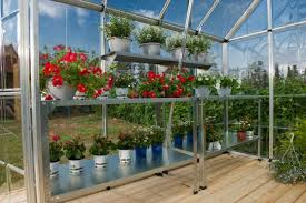Palram Lean To Greenhouse Poly Tex Snap U0026 Grow 8x20 Silver Greenhouse Hg8020 Free Shipping