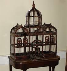 cool bird cages for sale my lovely birds bird