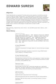 Resume Sample For Programmer by Enterprise Architect Resume Samples Visualcv Resume Samples Database