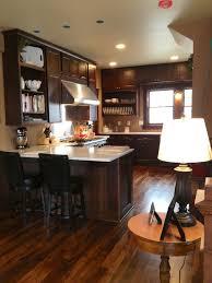 Chestnut Kitchen Cabinets Dynasty Omega Cabinets Wyatt Profile F Alder Chestnut Home