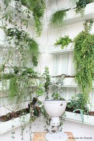 Interior Garden Plants by 271 Best Vertical Gardening Images On Pinterest Landscaping