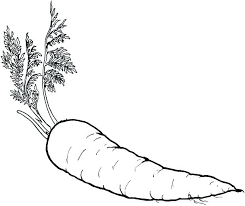 healthy food coloring pages preschool healthy food coloring pages carrot coloring sheet healthy food