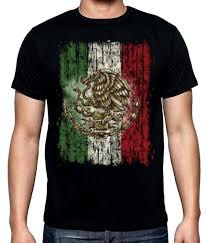 Flag Of Mexico Picture Amazon Com Aztlan Mexican Flag Skull Mens Graphic T Shirt