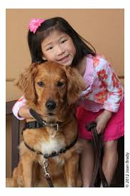 775 best service dogs images on pinterest service dogs therapy
