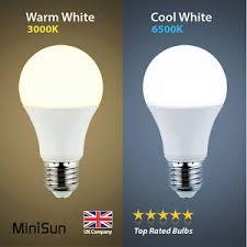 MiniSun 6W 10W LED 60W 100W ES E27 GLS Lamp Light Bulbs Warm