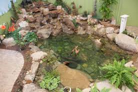 pond design and service pittsburgh pa best feeds garden centers