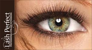 professional eyelash extension lash professional eyelash extensions at beauty