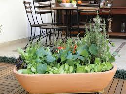 Kitchen Herb Pots Crop Pots Easy Container Gardening Cooking Light