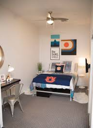 decoration ideas for evolve auburn or your college apartment