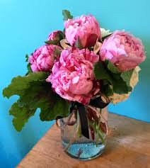 peonies delivery just peonies in beverlywood ca the plum dahlia