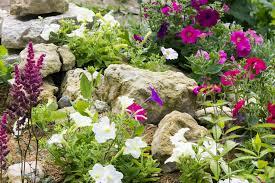 Creating A Rock Garden 11 Ideas For Creating A Rock Garden Angie S List