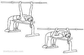 Flat Bench Press Dumbbell Flexfriday U2013 Triceps U0026 Biceps Workout U2013 Simran Ghatt