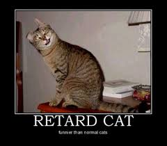 Inspirational Funny Memes - inspirational memes betameme