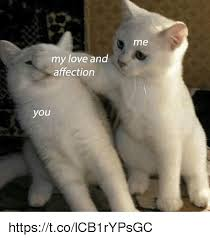 In Love Meme - me my love and affection you httpstcolcb1rypsgc love meme on