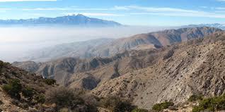 spotlight joshua tree national park visit california
