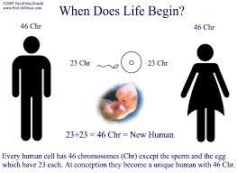 when does begin