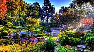 garden green wallpaper hd free download tea gardens the garden
