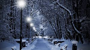 snowfall lights decor