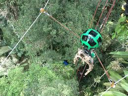 canopy amazon google maps takes street view camera through amazon canopy gps world