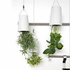 kitchen wall indoor herb garden the advantages of indoor herb