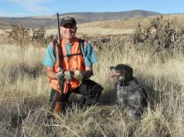 2016 2017 quail reports arizona quail hunting camp