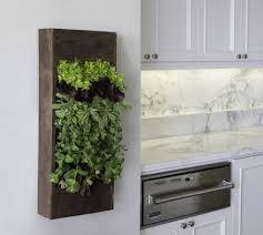 indoor kitchen garden design home outdoor decoration