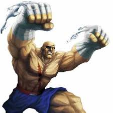 from street fighter main character name blanka character giant bomb
