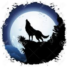 wolf moon stock photos royalty free business images