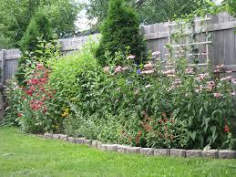 Privacy Garden Ideas Garden Fencing Ideas Privacy And Photos Madlonsbigbear