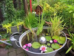 miniteich balkon 159 best garten images on plants garden ideas and gardens
