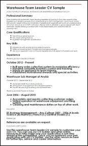 E Resume New 2017 Resume Format And Cv Samples Meritworks Us by Sample Resume Format For Bpo Experienced Eliolera Com
