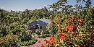 Gardeners Falls Maleny - tamarind retreat accommodation spicers retreats