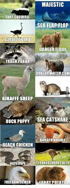 Panda Mascara Meme - 25 best memes about panda describe panda describe memes