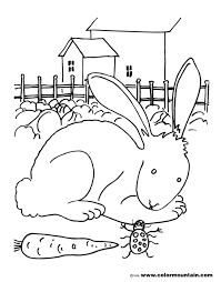 bunny rabbit coloring picture create a printout or activity