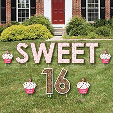 Backyard Sweet 16 Party Ideas Sweet 16 Birthday Party Theme Bigdotofhappiness Com