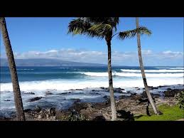 113 best surfing images on surfing and hawaii