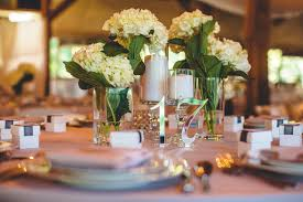 Bulk Hydrangeas Bulk Hydrangeas Sams Club Love Party