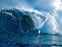 biggest megalodon shark biggest megalodon shark in the world images