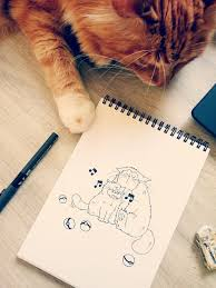 best 25 sketch of cat ideas on pinterest cat sketch drawing of