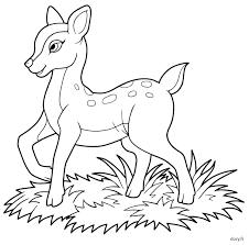 dessin à imprimer un faon coloriage et dessins pinterest
