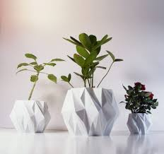 Plant Home Decor by Greenery In Home Decor U2013 Sevenedges