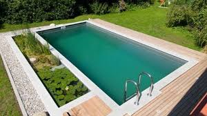 Natural Swimming Pool Natural Swimming Pools U0026 Ponds