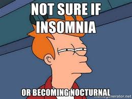 Insomnia Meme - a lone spoonie in a forking mess besties insomnia and i my