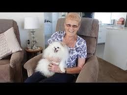 willowdale retirement village village pets