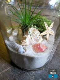 133 best sand art terrariums images on pinterest air plant