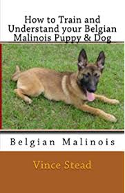 belgian sheepdog pros and cons belgian malinois comprehensive owner u0027s guide kindle edition by
