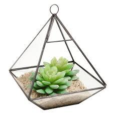 hanging glass terrarium mini greenhouse tabletop succulent planter ca