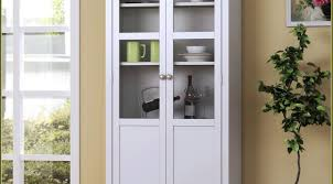 Storage Cabinet With Doors And Drawers Shelf Engaging Storage Cabinet With Glass Doors And Drawers