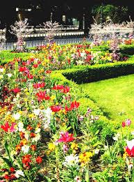 39 best garden images on pinterest flower gardening flowers