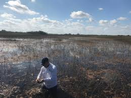 what we talk about when we talk about everglades restoration wlrn